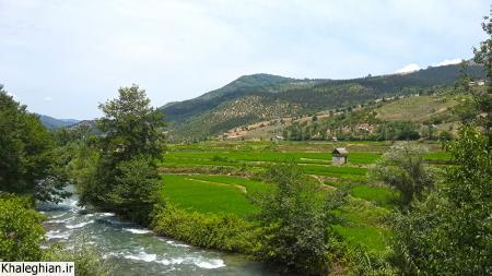 شالیزارها و رودخانه تجن جاری از سرریز سد سلیمان تنگه